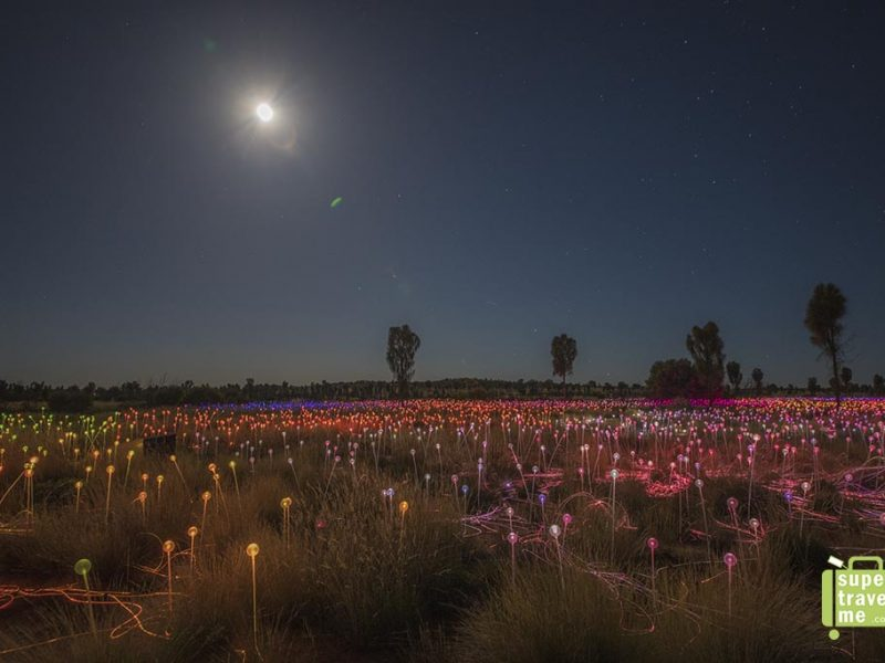 Field of Light Uluru 2017 with moonlight