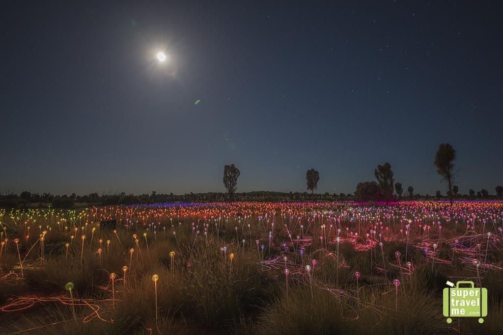 Field of Light Uluru 2017 with moonlight