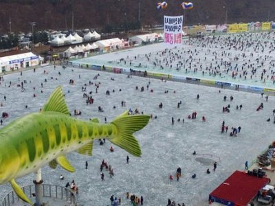 This 2017 file photo shows visitors watching sancheoneo, a type of mountain trout, during the annual Hwacheon Sancheoneo Ice Festival in Hwacheon (PHOTO CREDIT: NARA Foundation)