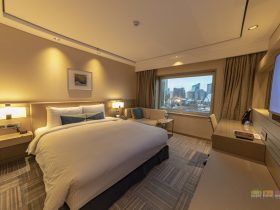 Superior Room 1113 at Novotel Ambassador Seoul Gangnam